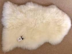 Ivory single shaggy